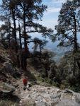 Hiking up!